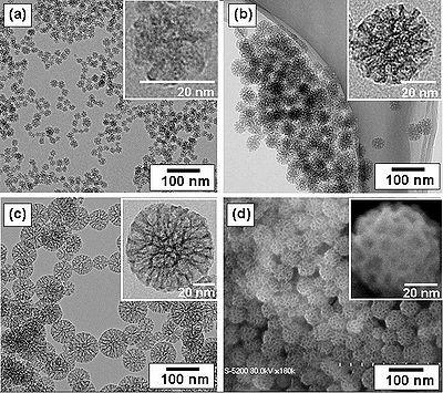 400px-Mesoporous_Silica_Nanoparticle