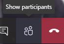 Teams Show Participants